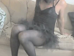 Pantyhose CD