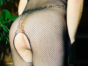 Ass in Fishnet Body Suit